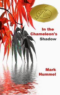 IN-THE-CHAMELEONS-SHADOW